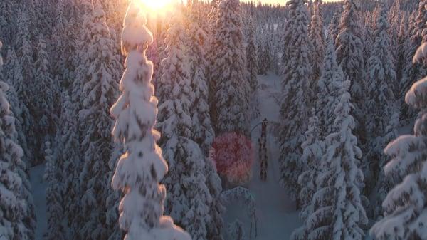 Thomas winter-landscape
