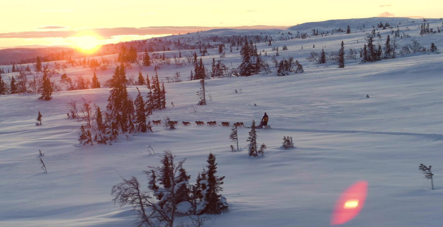 Thomas Wærner in winterlandscape